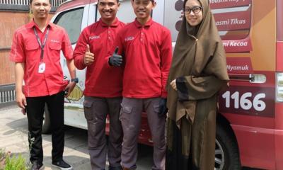 Jasa Suntik Anti Rayap di Bandung