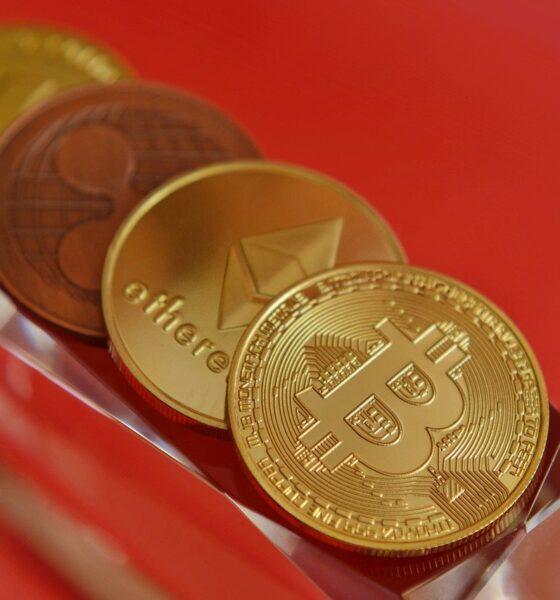 Investasi Crypto Jangka Panjang